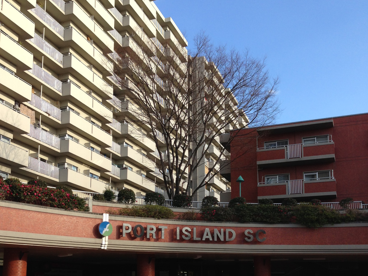 evergreen-portisland_01